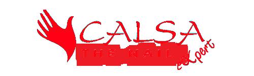 Magazin Calsa